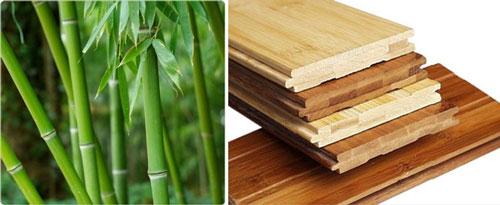 """Бамбуковый паркет является популярным """"зеленым"""" материалом, но он не является устойчивым"""